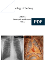 Pathology of the Lung