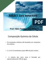 AULA 2 - BIOQUÍMICA - ÁGUA E SAIS MINERAIS 1 (1)