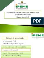 Apresentacao_IPEME_Erica_05.06.2012.pdf
