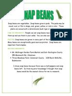 Snap Beans L