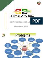 Apresentacao INAE_Jose Rodolfo