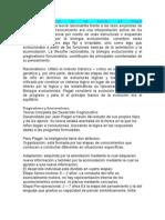Principios básicos de las teorías de Piaget-sintesis