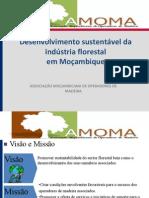 Apresentacao AMOMA_Jorge Chacate 24.07.2012.pdf