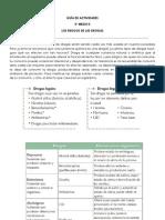 Guía de actividades 3° medio