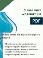 LP II-5-Glande Anexe 2013