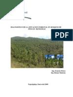 Diagnostico de los bosques de Coniferas Honduras Flórez2005.pdf