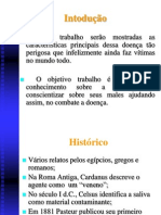 Apresentação - Raiva - José André.pptx