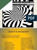 La percepción power