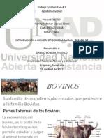 Trabajo_Practico_1_201106_12.pdf