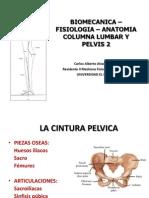 Biomecanica-fisiologia-Anatomia Columna Lumbar Pelvis2