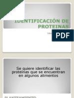 IDENTIFICACIÓN DE PROTEINAS
