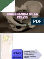 2 Biomecanica de La Pelvis
