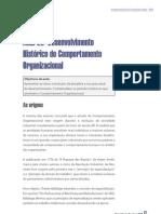 Comportamento Organizacional aula02