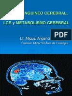 13. Flujo Sanguíneo Cerebral, LCR y Metabolismo Cerebral