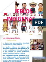 PUEBLOS INDIGENAS.ppt