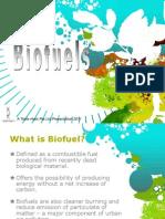 L03 Biofuels