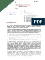 Modelo de Progracion Anual - 2013.