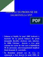 Toxiinfectii Salm