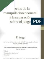 Efectos de la manipulación neonatal y la separación