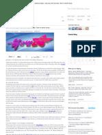 IDG Connect – Dan Swinhoe (Asia) - Use Linux My Comrade_ Tech In North Korea