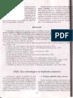 Extras Bria, Pr Prof Dr Ion - Teze Ecleziologice