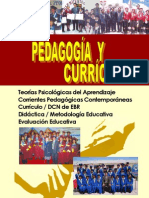 Pedagogia Curriculo Roque Vargas Willean