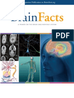 Brain Facts - A Primer on the Brain and Nervous System (Brainfacts.org, 2012) Excellent