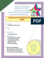 Monografia de La Oraganizacion de Rapido Aprendizaje (ORA)