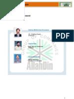 Allah Din Group of Company Internship Report
