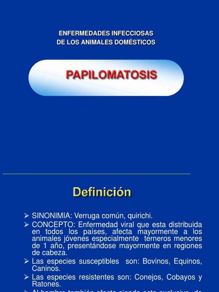 papilomatosis de bovinos