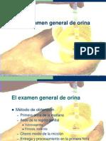 El Examen General de Orina
