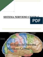 4-SISTEMA NERVIOSO CENTRAL.ppt