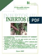 Injertos2