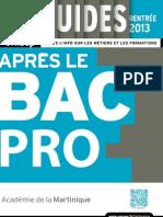 Bacpro_2013.pdf
