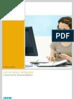 SAP Cash Flow Management Ba En