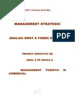 Management Strategic - Analiza SWOT a Firmei Dedeman