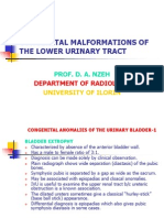 Congenital Malformations of the Lower Urinary Tract (Without Images-2)-Mar 2012