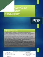IDENTIFICACIÓN DE NUTRIMENTOS ORGÁNICOS