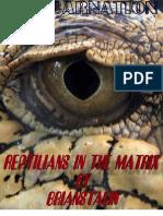 Reptilians in the Matrix