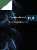 audicion 2010 total[1].pptx