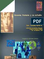 Clase 2 Genoma Humano