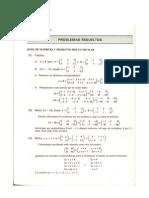 Ejemplos y Problemas Operaciones Entre Matrices