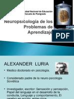 Neuropsicología de los Problemas de Aprendizaje orginal