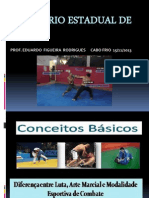 SEMINÁRIO ESTADUAL DE MMA