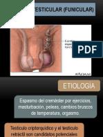 Urologia Hidrocele Torsion Varicocele