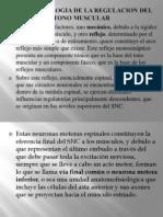 Neurofisiologia de La Regulacion Del Tono Muscular.