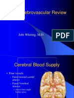 Cerebrovascular Review