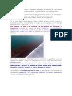 Articulos de Marea Roja