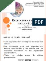 Clase No. 6 Estructura y función de la célula