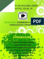 PRESENTACION ECOLOGIA(proyecto)